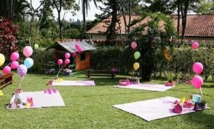 Kids Picnic Birthday Party